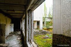 DSC_1381 (andrzej56urbanski) Tags: chernobyl czaes ukraine pripyat prypeć prypyat kyivskaoblast ua