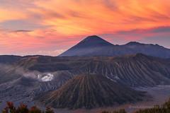 Dawn at Mt. Bromo (maurime58) Tags: asia giava indonesia mountbromo oriente vacanza viaggio alba isole vulcani