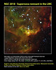NGC 2018 - Supernova remnant in the LMC (Ángel López-Sánchez) Tags: 2016 aao aat cacti astronomy ngc2018 outreach lmc supernovaremnant
