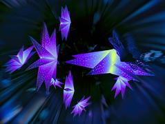 Adventssterne (novofotoo) Tags: composing digitalimaging lichter mehrfarbig weihnachtsmarkt weihnachtssterne winter lights multicolored