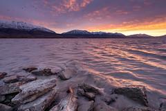 Four in a Million | Utah Lake, UT (sampost) Tags: utahlake utah utahvalley sunrise escaype luckyducks hff roadtrip burnbabyburn