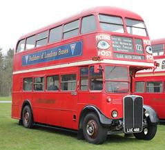 Detling Bus Rally (messy_beast) Tags: buses kent detling