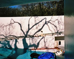 Berthold Lubetkin (google it if you don't know why) (deepstoat) Tags: shadow white tree london pool painting zoo penguin contaxt3 bertholdlubetkin fujipro400h
