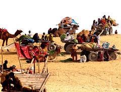 More camel cart families at Mella (S M JOYIA) Tags: pakistan horse festival youth children fun dance women desert transport culture donkey snack punjab mella horsecart horsepower donkeycart manpower camelcart cholistan rohi colorsofpakistan chananpeer snackcharmer interestingsandcamel vehiclewheels danceondrumbeat