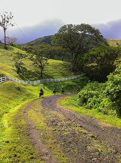 Horseback Riding in the Verdant Hills