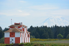 Mt. Rainier (MDawny72) Tags: blue summer sky mountain beautiful birds museum spring arm flight planes mcchord retired mtrainier base starlings heritagehill jblm