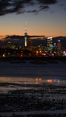 The Auckland Sky Tower (n.dunnning) Tags: ocean camera leica travel bridge light newzealand summer sky blackandwhite bw sun shells holiday fish tree green art tourism beach water night clouds four photography star photo fishing bush sand long exposure waves dof native harbour australia olympus tourist panasonic auckland exotic micro nz wellington zuiko omd thirds 25mm piha mangawhai 75mm m43 14mm mft em5 bokef