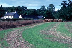 Farmhouse near Cawdor (1990) (Duncan+Gladys) Tags: uk scotland nairn cawdor