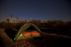 Camping in Cottonwood at Joshua Tree (burkite) Tags: park camping camp moon stars nationalpark twilight desert joshua joshuatree tent nighttime cottonwood moonlight campground rei starry campsite tenting
