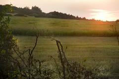 IMG_7274 Evening - Country Bratejov,Czech rep.  - Seen On Explore - 2013-06-09 # 248 (jaro-es) Tags: light luz sol nature canon landscape evening abend licht natur natura explore landschaft sonne naturesfinest naturewatcher eos450 naturemaster