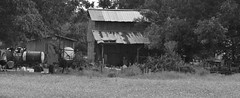 Tobacco Barn on Chicken Foot Road (Gerry Dincher) Tags: grayscreek northcarolina cumberlandcounty chickenfootroad ruralsouth tobaccobarn blackandwhite farmequipment farm farming gerrydincher