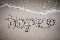 BrandiFitzgerald.LidoBeach012 (brandifitzarts) Tags: newyork beach waves scene longbeach shore eastcoast beachscene sandwriting lidobeach newyorkbeach brandifitzgerald sayingsinsand