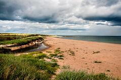 St Combs (RiserDog) Tags: beach scotland day aberdeenshire cloudy northsea stcombs saintcombs