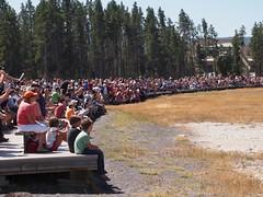 Crowds watching Old Faithful (abi_zn) Tags: nationalpark montana crowd oldfaithful yellowstonenationalpark yellowstone wyoming geyser