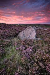 Rock On Heather! (R J Harris) Tags: uk pink sunset landscape nationalpark purple sundown heather derbyshire peakdistrict goldenhour canon163528l leefilters blinkagain canon1dx