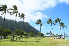 04172015_012_ (ALOHA de HAWAII) Tags: hawaii oahu kualoaregionalpark