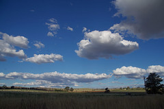 Cumulus humilis clouds, Cootamundra, NSW, 29/01/15 (Russell Cumming) Tags: cloud cumulus newsouthwales waggawagga cootamundra cumulushumilis