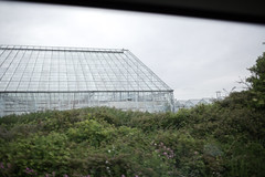 (ziemowit.maj) Tags: nature britishcountryside trainwindowview ef35mmf14l canon5dmkiii glasshousesnexttobusehes