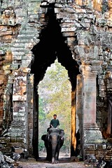 ANG213 (vanhkhuyenmai) Tags: ancient angkor angkorthom animals architecture asian building cambodia carry carrying carved carvings civilisation death ears east elephants entrance gate gateofdeath looming mahout massive men monuments moving path pathway piles pillars portrait pose posing ruins siemreap sit sitting structure tall thom tower trunk vertical walk walking ang