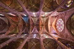 La Seu - Cathedral (pxls.jpg) Tags: tokina1116f28 canon50d
