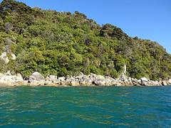 Abel tasman national park 10