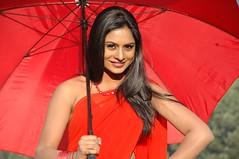 South Actress Deepika Das Hot in Red Sari Photos Set-5 (7)