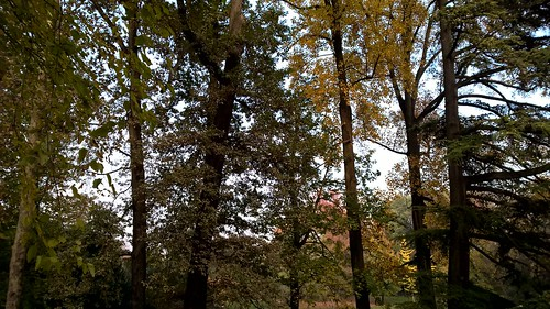 Il parco Basetti
