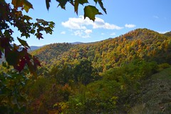 Paint the Hills (NC Mountain Man) Tags: fall sky clouds trees coloredtrees fallcolors brp blueridgeparkway ncmountainman nikopn d3200 phixe