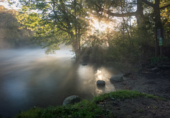 Cold Morning (Matt McLean) Tags: annarbor autumn delhi forest landscape longexposure mist morning park river riverbank sunlight michigan unitedstates us