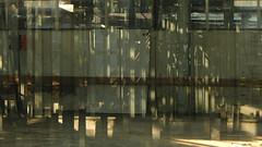 Greenhouse II (offroadsound) Tags: greenhouse gewchshaus reflection columns pillars light abandoned off labyrinth labyrint autumnleaves