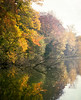 Autumn (Thomas Claus) Tags: bruxelles rouge cloître mamiya rz67 payasage 6x7 kodak