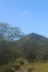IMG_1339 (michelleingrassia) Tags: diamondhead volcano hike oahu hawaii