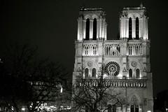 (ettigirbs2012) Tags: nb bw architecture notredamedeparis iledelacit paris nuit night nightshot arbres trees cathdrale cathedral glise church
