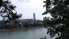 Basel-2016_06 (rhomboederrippel) Tags: rhomboederrippel 2016 fujifilm xe1 switzerland basel citycentre citycenter historic river rhine rhein rochetower tree
