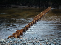 (turgidson) Tags: panasonic lumix dmc g7 panasoniclumixdmcg7 panasonicg7 micro four thirds microfourthirds m43 g lumixg mirrorless x vario 35100mm 35100 f28 hhs35100 telephoto zoom lens panasonic35100 panasoniclumixgxvario35100mmf28 silkypix developer studio pro 7 silkypixdeveloperstudiopro7 raw bray wicklow ireland flood defence protection relief scheme river dargle construction works p1080167 steel sheet pile piling sheetpiling harbour