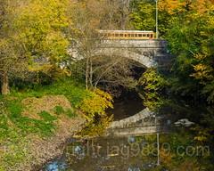 Mosholu Parkway Bridge over the Bronx River, Bronx, New York City (jag9889) Tags: autumn usa color bridge waterway reflection newyork outdoor 2016 southernboulevard bronxpark archbridge plant nybg 20161102 tree river bronx newyorkcity k345 schoolbus foliage mosholuparkway yellow jag9889 bronxriver