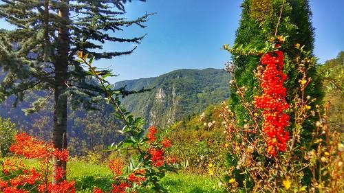 Ugar canyon, Vlašić mountain, RS, BiH