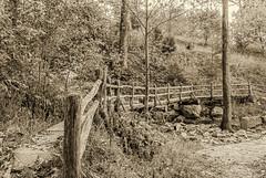 A Bridge Aross A Dry Creek (Back Road Photography (Kevin W. Jerrell)) Tags: cumberlandgapnationalhistoricalpark cumberlandmountain gapcreek nikond60 bridge trails hiking backroadphotography footpath waterways drought dry