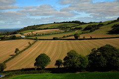 Rolling-Hills (michaelwr) Tags: fields sky clouds hedges trees viewfromdunamase ireland