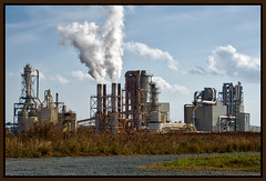PLEASE MR. PRESIDENT [ELECT] . . . (NC Cigany) Tags: factory plant pollution smokestacks rural weeds political corinth northcarolina nc