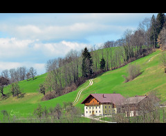 {    } (3    d ) Tags: house salzburg green austria nikon cottage zellamsee   3houd  ohoud blinkagain
