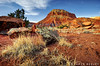 Low View at Red Rocks (James Neeley) Tags: newmexico santafe landscape hdr santafeworkshops eddiesoloway 5xp jamesneeley flickr25 naturaleye