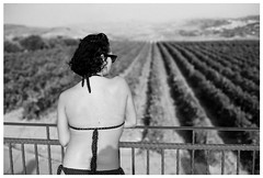 agriturismo ritratto (gorbot.) Tags: summer blackandwhite bw f14 sicily roberta piazzaarmerina canoneos5d nikonfmount planar5014zf silverefex carlzeisszf50mmplanarf14 eosadaptor agriturismogigliotto