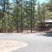 Whitetail Campground #16