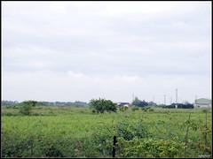 DSC00325 Photo