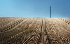 Im Feld (_David_Meister_) Tags: blue sky field lines st composition germany landscape deutschland horizon feld himmel blau agriculture landschaft johann horizont komposition agrar linien davidmeister
