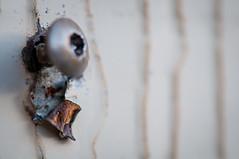 rusty torn metal (Es.mond) Tags: house metal screw backyard shed rusty torn nikond90 nikkor105mmf28gvrmicro afs105mm28vrmicronikkor