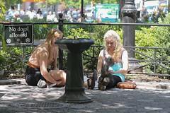 Union square  nyc (pspyro2009) Tags: nyc newyork manhattan candid unionsquare unionsquarenyc peoplenyc nyfaces