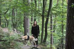 1666 Hanau (Pixelkids) Tags: summer france forest frankreich wald foret vosges hanau vogesen vosgesdunord summer2012 foretdomanialedehanau