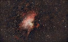 Eagle Nebula - M16 - bad color (Teva CHENE) Tags: canon m16 celestron xsi eaglenebula c14 baader 450d pixinsight messier16 starizona Astrometrydotnet:status=failed hyperstar backyardeos Astrometrydotnet:id=alpha20130566015657